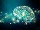 università insubria neuroscienze