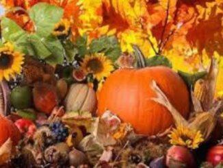 villacortese fiera mercato autunno