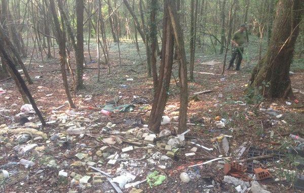 rescaldina vanzaghello boschi pulizia plogging