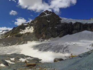 ghiaccia tessile cambiamento climatico