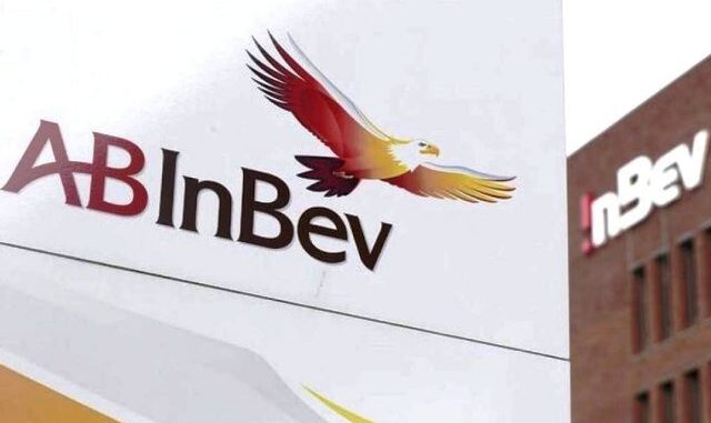 gallarate ab inbev birra