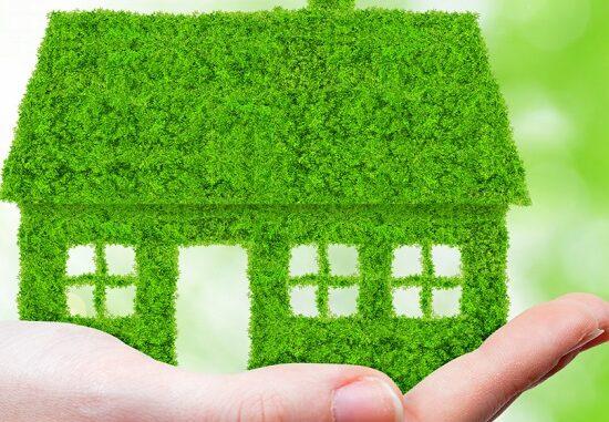 tutela ambiente green school
