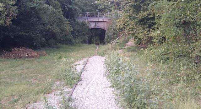 castellanza ferrovia valmorea astuti