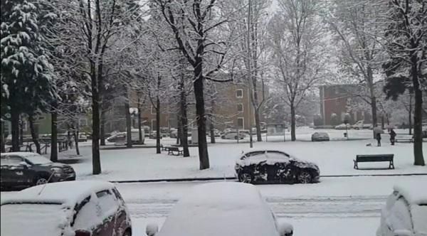 bottini neve pandemia spirito civico