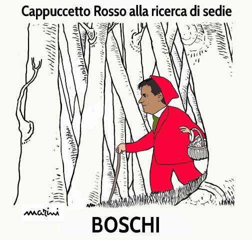 boschi ministro