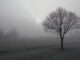tempo nebbia temperatura calo