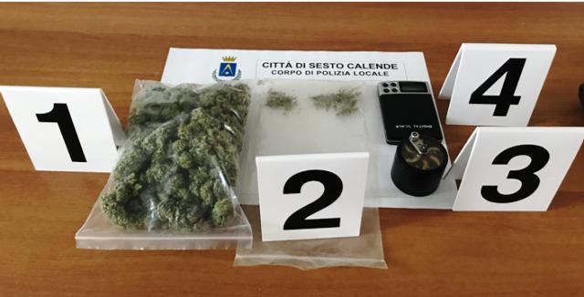 sesto calende sequestro marijuana