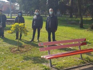 villacortese 8marzo fiori panchina