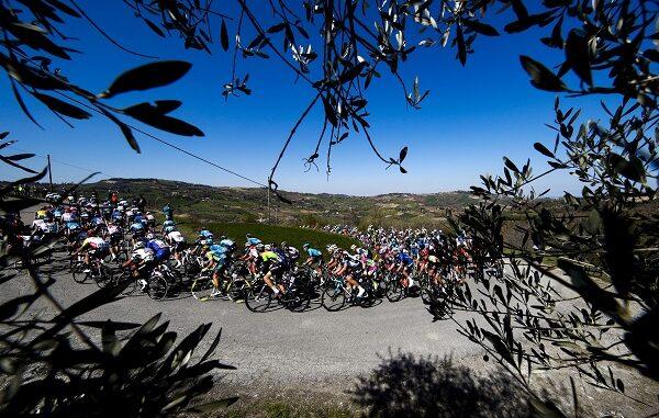 ciclismo bici mercato vendite
