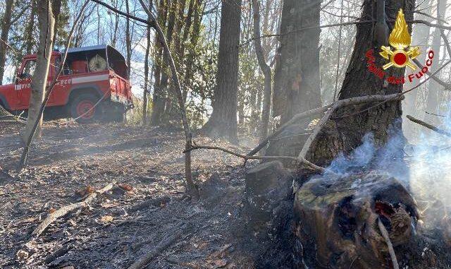 cadegliano viconago incendi boschi
