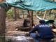 castellanza spaccio boschi polizia