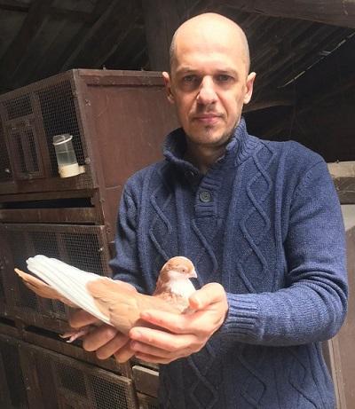 olcella piccioni viaggiatori maftei 06