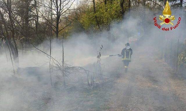 somma incendi boschivi piromane