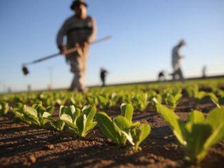 varese protesta agricoli prefettura