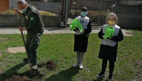 gorla maggiore scuole plis green school
