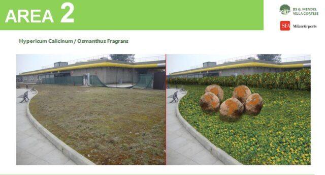 malpensa progetti aree verdi scuole