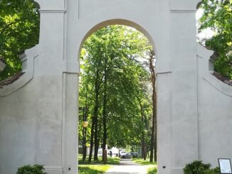 castellanza parco platani arco