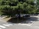 sesto nuova marna parcheggio chiuso centro
