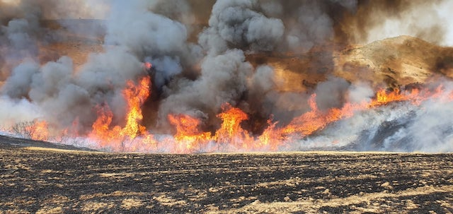 turbigo volontari parcoticino incendi