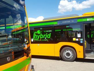 autobus Varese