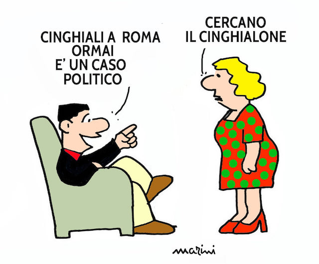 roma cinghiali