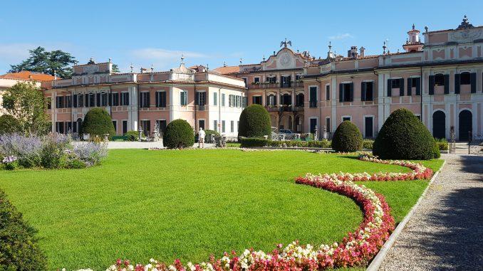 Wwf Varese