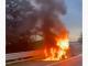 auto fiamme a8 busto