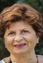 frattolillo dairago elezioni civicadairago candidati