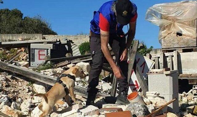 gallarate cane soccorsi macerie