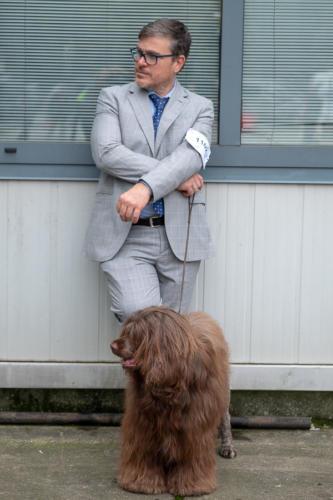 giogara374642-Insubria winner - cani a malpensa fiere